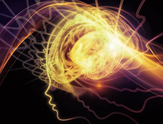 brain-health-sun - گاتریا