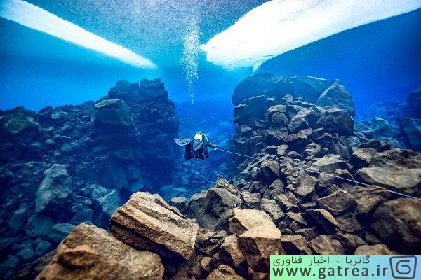 برترین عکس زیر آب